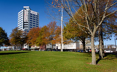 Lots of Autumn Colours (Jocey K) Tags: autumn trees newzealand christchurch sky cars architecture buildings lawn victoriasq