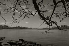 Hokusai and Manhattan (1_drey) Tags: nyc river landscape manhattan hudson hokusai bwnyc