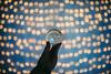 Bokeh | Xmas Lights | GlassBallProject #345/365 (A. Aleksandravičius) Tags: xmas hand lithuania lietuva bokeh christmas lights 2016 reflections wall glass ball crystal project nikond810 nikon d810 sigma 35mm sigma35mmf14dghsmart sigma35 art 365days 3652016 365 project365 345365 profoto b2 profotob2