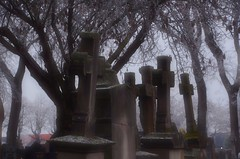 """Il fait froid, parce que l'on regarde là où il n'y a pas de chaleur."" (Willa Cather)""It is cold, because we look where there is not a heat."" (Philippe Haumesser Photographies (+ 4000 000 views) Tags: cimetière cimetières cemetery cemeteries brouillard fog froid cold hiver winter pierrestombales graveyards arbres trees arbre tree colmar alsace elsass france nikond7000 nikon d7000 reflex 2016 croix cross crosses"