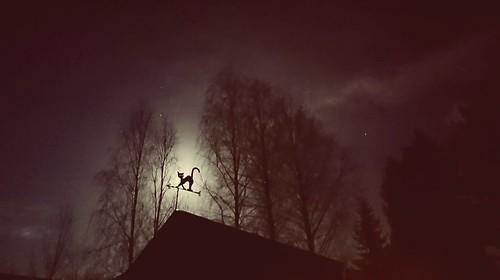 Full moon ☽