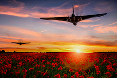 POP044 (Smart Aviation Art) Tags: poppy poppies poppyfield poppyfields lancaster vulcan avro spitfire hurricane aircraft military bbmf
