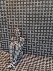 Ausstellungsstück (WiSch | Foto) Tags: wischfoto bayern deutschland de kariert tarnung baumesse