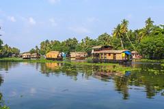 Rush hour (Akhil Sanjeev) Tags: boat tourism punnamada lake alappuzha alleppey kerala india house green greenery outdoor water landscape watercourse
