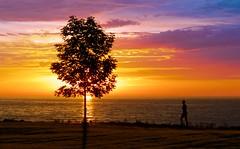 Sunset Walk (imageClear) Tags: color colors lakemichigan sheboygan wisconsin aperture nikon d500 80400mm person woman walker walk sun silhouette beauty rich imageclear flickr photostream