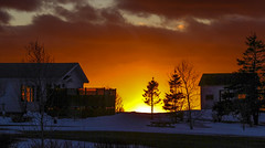 Sunset down the hill (Danny VB) Tags: christmas noel sunset gaspesie christmastime christmassunset winter snow cold neige hiver house decoration sapin tree christmastree window througthewindow dannyboy photo photography canon 7d eos ef135mmf2lusm gaspésie québec canada granderivière canadianwinter hivercanadien