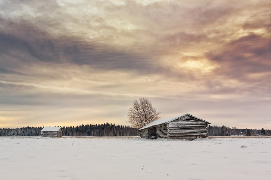Two Barn Houses On The Winter Fields