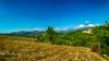 Osmaniye - Kadirli - Killik Sırtı (Oruçbey Köyü) (omardaing) Tags: yellow landscape color nature blue tree green colorful outdoor osmaniye kadirli doğa pentax k10d manzara tamron 1024mm oruçbey