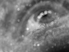 Bokeh Vision (MacroMarcie) Tags: bokeh layer texture eye macromarcie self selfie 365 project365 blackandwhite monochrome