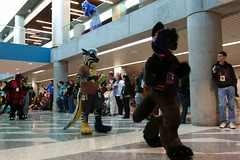 FCParade2017_03_-20170114-00042 (Kory / Leo Nardo) Tags: fur furry fursuit suiting dance party dj con convention further confusion fc san jose marriott center parade walk march fc2017 2017 pupleo kory