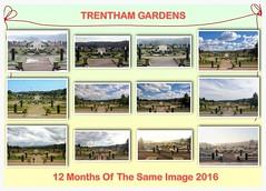 12 Months Of The Same Image 2016 (jeannie debs) Tags: gardens seasons winter spring summer autumn 12monthsofthesameimage