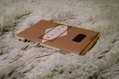 Poetry With Plath (sofiainspace) Tags: book poems poetry sylvia plath literature words blanket soft fur white cozy