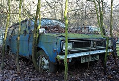PLW 152L (Nivek.Old.Gold) Tags: 1973 hillman hunter 1500 dl estate