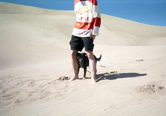 ryan and bowie. (jhdahl29) Tags: outdoor colorado disposable camera film singleuse dunes dog mutt people heeler