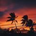 JI_sunset002
