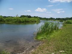 Enjoying Falls Township Community Park Lake (MissyPenny) Tags: park usa water pennsylvania buckscounty partlycloudy levittown southeasternpa fallstownship commonwealthpa