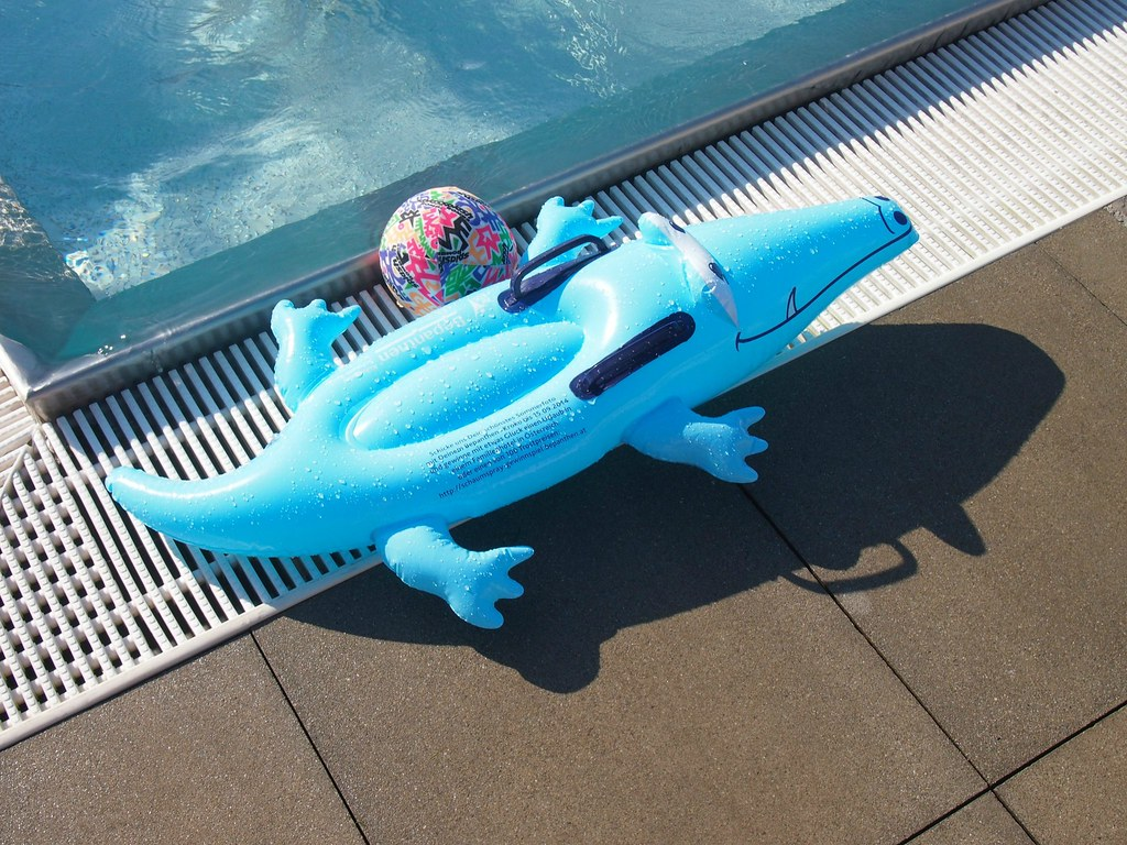 Gallery Of Freibad Tags Summer Salzburg June Swimming Ball Austria  Schwimmen Sommer Alligator With Fin Pall