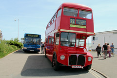 Old and Modern . Bexhill Roaring 20s 2015 (Daves Portfolio) Tags: old blue 1920s red tourism modern off event routemaster hop stagecoach doubledecker roaring 20s londonbus roaring20s bexhill 2015 bexhillonsea bygoneera singledecker cuv363c gx54dwz
