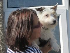 Marion and Minnie (billnbenj) Tags: dog cumbria jackrussell jackrussellterrier barrow