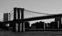 Morning Light (pjpink) Tags: nyc bridge summer blackandwhite bw newyork monochrome june brooklynbridge iconic 2015 pjpink