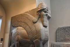 Winged human-headed bull, Assyrian, from Nimrud, about 865 - 860 BCE (2) (Prof. Mortel) Tags: london britishmuseum mesopotamia assyria nimrud
