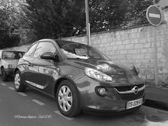 Vous connaissez lOPEL  Madame  ? - Caen (14) - BL - Aot 2015 (heuliez142011) Tags: auto adam car voiture opel