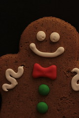 Good Enough to Eat.. (catherine4077) Tags: christmas gingerbreadmen gingerbread cookie sweets cute macro december 2016