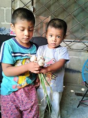 2016 children with produce (Foods Resource Bank) Tags: foods resource bank frb mennonite central committee mcc mexico chiapas ocosingo indigenous kitchen gardens smallholder farmers families women children food security humanitarian