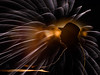 she lights up my life! (marianna_a.) Tags: p2380527 mom mother guiding light fireworks rimlight composite mariannaarmata portrait silhouette profile lady senior love mamcik cau montreal