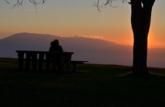 contemplating (robra shotography []O]) Tags: tree bench overlook sunset sooc belvedere acuto lazio montiernici tramonto