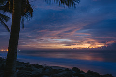 Velvet sea (runovv) Tags: srilanka evening india trees tree wood nature palm sky dark darkness sea seascape seaside sunset skyscape clouds longexposure beach warm sun