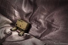 Cosy Danbo (dareangel_2000) Tags: dariacasement danbo cosy bedtime tired zzz snooze duvet stilllife adventuresofdanbo