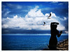 mermaid statue and seagulls (pàmies photo) Tags: seascape sea cloudscape clouds mermaid statue seagulls landscape beautifulview sky skyscape serenity outdoors sitges catalonia