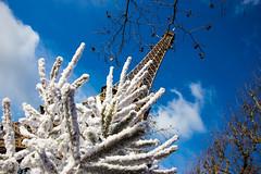 Paris: Eiffelturm (kevin.hackert) Tags: architektur eiffeltower eiffelturm eisenfachwerkturm fr france frankreich französisch gebäude hauptstadt latoureiffel paris weltausstellung paris7earrondissement îledefrance