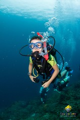 slu_bradh_V55A6082535 (kaufmankronicle) Tags: 2016 diving kidsseacamp stlucia