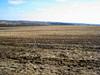 DSC01035 (sergeyudalov) Tags: landscape ландшафт clouds overcast облака springtime spring весна весенняяпора grass трава plants растения trees деревья white белый sky небо blue синий голубой black чёрный arable пашня field поле