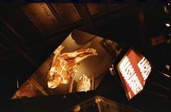 BerlinoGen17004 (Matteo Scaltriti (Cloudscollector)) Tags: berlin berlino film analogic analogica analogico plastination human body muscles corpo umano plastinazione