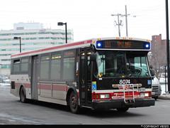 Toronto Transit Commission #8074 (vb5215's Transportation Gallery) Tags: ttc toronto transit commission 2007 orion vii