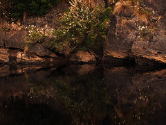 Pixie landg sm (Dvd2u) Tags: dvd2u dvd2uatwork tassie dreaming leven river