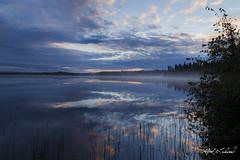 Morning Reflections in Talkeetna (Alfred J. Lockwood Photography) Tags: alfredjlockwood nature landscape lake water dawn twilight morning cloud sky reflection talkeetna alaska summer