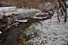 der Bach im Winter (Hugo von Schreck) Tags: hugovonschreck outdoor bach canoneos5dsr tamron28300mmf3563divcpzda010 horbach hessen deutschland