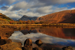 Tranquillity (images@twiston) Tags: lochetive loch sea water tranquil tranquillity serene serenity autumn sunlight glen etive stobdubh buachailleetivemòr buachailleetivemor buachailleetivebeag stobdubah beinnceitlein benstarav stobnabroige le longexposure 10stopnd reflections reflection blue sky clouds rocks rocky shore trees river gualachulain mountains glencoe rannochmoor corbett munro moor moorland remote hills highlands scottishhighlands highlandsofscotland mountain rock valley scotland landscape green grass meadow patchwork dappled hill imagestwiston schottland caledonia ecosse escoia alba lakes lake argyllbute argyllandbute argyll