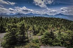 Cascade Mountain Peak, Lake Placid, NY (Jess Ayotte) Tags: trees sky nature forest climb high peak adirondacks adk adirondackmountains