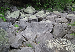 Talus from bluff of Baraboo Quartzite (upper Paleoproterozoic, ~1.7 Ga; Tumbled Rocks Trail, Devil's Lake State Park, Wisconsin, USA) 1 (James St. John) Tags: park lake rocks state south devils trail ranges range quartzite baraboo precambrian tumbled paleoproterozoic proterozoic
