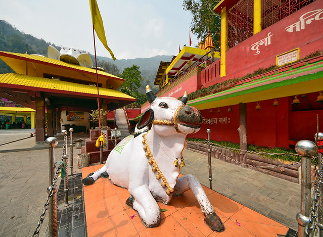 India - Sikkim - Legship - Shiv Mandir Hindu Temple - Nandi - 13