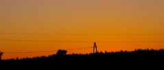 evening sky (Darek Drapala) Tags: wood light sunset red sky sun color nature forest landscape lumix evening poland polska panasonic skyskape panasonicg5