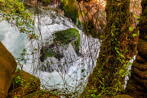 Banias Fall