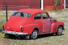 Volvo PV 544 (Burminordlicht) Tags: volvo veteranbil oldtimer sweden schweden sverige vintagecars rust rustycar rost rostkiste rostbeule rostig rostauto rostlaube schrottkiste scrapcar scrap scrapyard