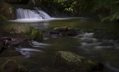 Welsh Paradise (shawn~white) Tags: longexposure nature water wales waterfall rocks unitedkingdom snowdonia tywyn dolgoch shawnwhite streamriver canon6d shawnraisindp