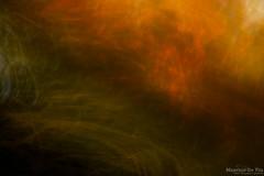 Fall into Winter (Maurizio Scotsman De Vita) Tags: natura foresta foglie trunks landscape astrazioni nature abstract plantsflowers italia panorama fall alberi mixedmedia colourful trees boschi abstractions abruzzo parconazionaledabruzzolazioemolise forest paesaggio leaves tronchi parks autunno autumn woods parchi astratto colorato impressionistic impressionistico livecolours pnalm